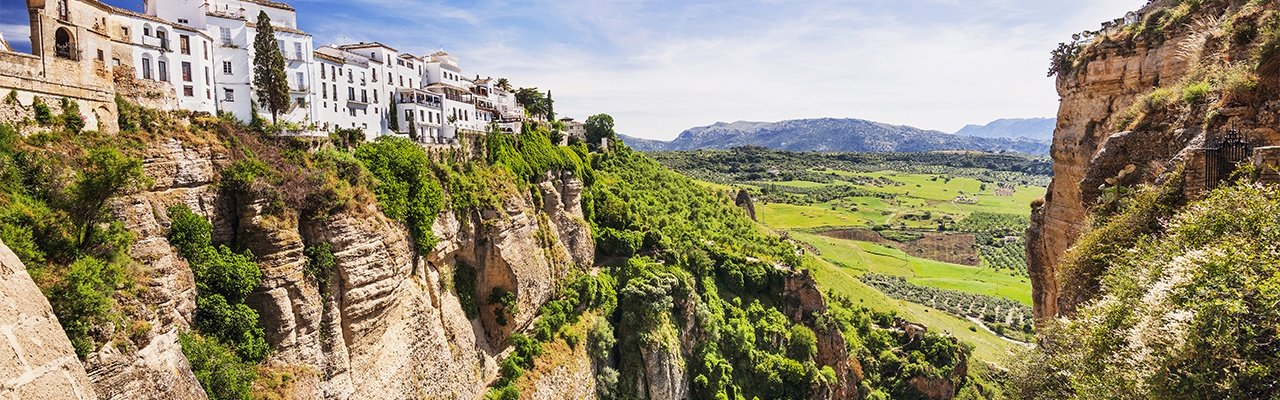 vineyards from andalusia