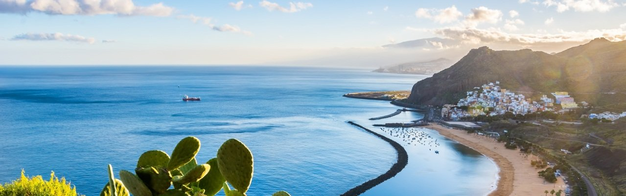 wineries for sale canary islands