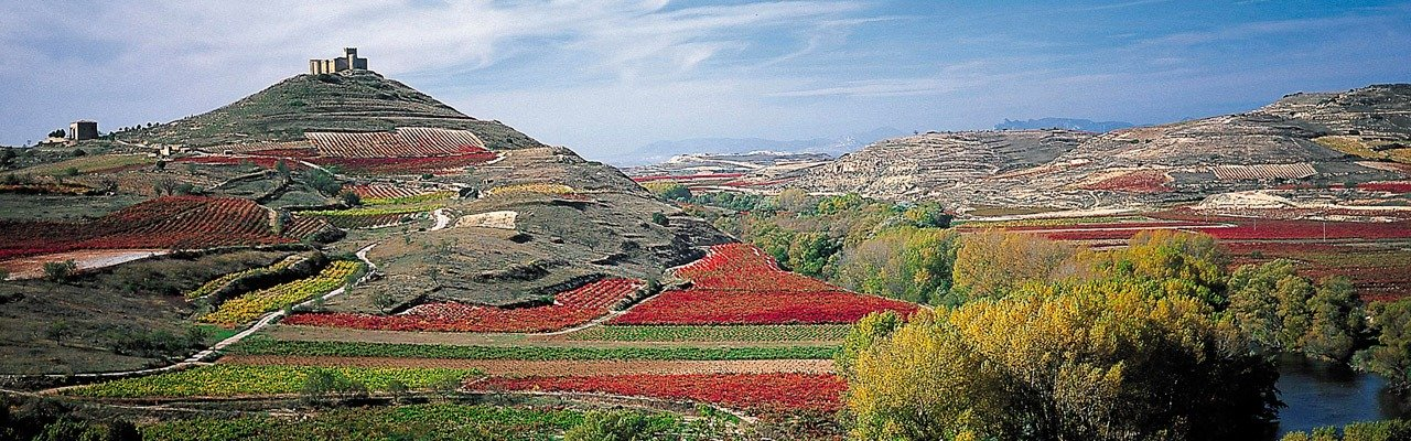 wineries for sale in la rioja