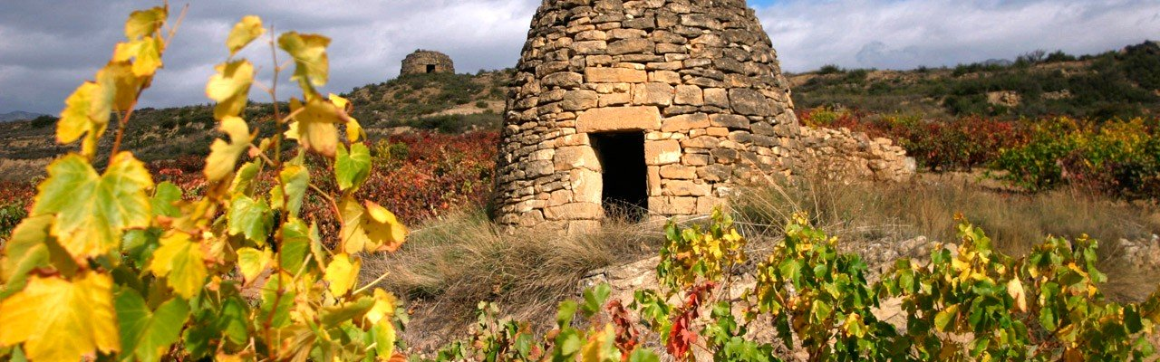la rioja wineries