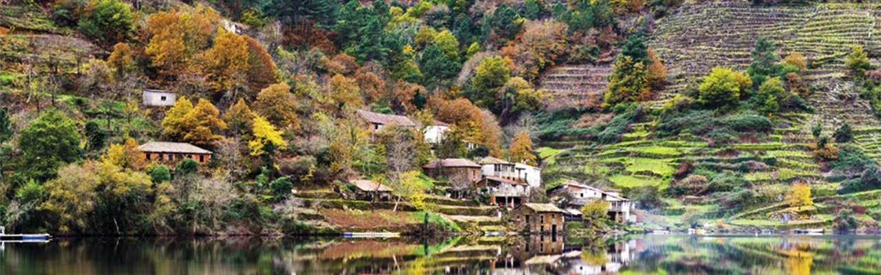 wineries and vineyards for sale do ribeira sacra