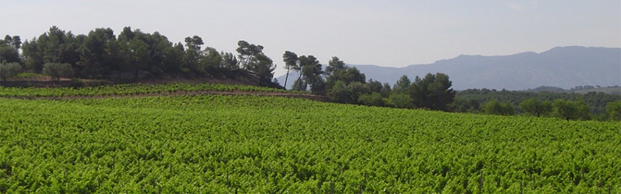 wineries for sale do terra alta