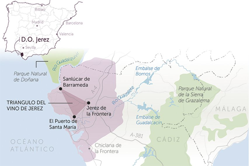 Map of the Designation of Origin Jerez in the Andalusian community