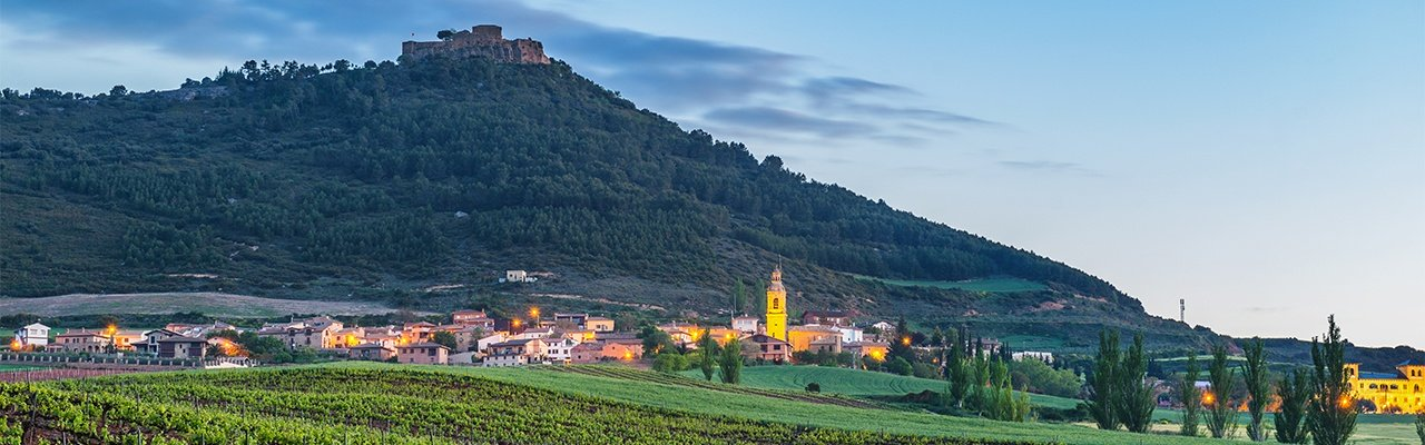 wineries and vineyards in the province of navarre
