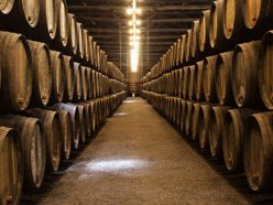 Spanish wineries and international investors